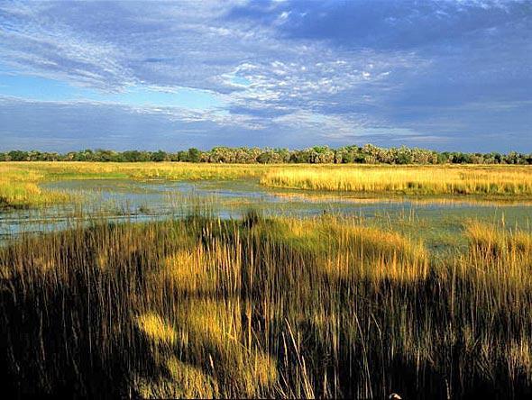 Дельта реки Окаванго и Парк Мореми